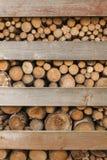 Συσσωρευμένοι ραμμένοι κλάδοι δέντρων Στοκ φωτογραφίες με δικαίωμα ελεύθερης χρήσης