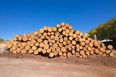 Συσσωρευμένος ξύλινος συνδέεται το πριονιστήριο στοκ φωτογραφία με δικαίωμα ελεύθερης χρήσης