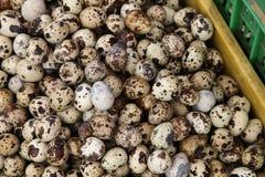 Συσσωρευμένος σωρός των αυγών ορτυκιών στο καλάθι Στοκ Εικόνες