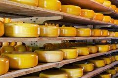 Συσσωρευμένο τυρί στοκ φωτογραφία