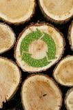 Συσσωρευμένο υπόβαθρο κούτσουρων με τις πράσινες εγκαταστάσεις ανακύκλωσης Στοκ φωτογραφίες με δικαίωμα ελεύθερης χρήσης