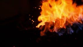Συσσωρεύοντας επάνω τους άνθρακες σε ένα κάψιμο σφυρηλατήστε φιλμ μικρού μήκους