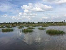 Συστήματα υδατοκαλλιέργειας, εκτενές αγρόκτημα πολιτισμού γαρίδων τιγρών Στοκ εικόνες με δικαίωμα ελεύθερης χρήσης