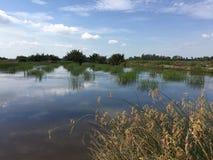 Συστήματα υδατοκαλλιέργειας, εκτενές αγρόκτημα πολιτισμού γαρίδων τιγρών Στοκ εικόνα με δικαίωμα ελεύθερης χρήσης