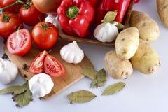 Συστατικά γευμάτων Στοκ Εικόνες
