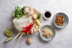 Συστατικά για τα πικάντικα ασιατικά τρόφιμα με το τηγανισμένο έντομο στοκ εικόνες με δικαίωμα ελεύθερης χρήσης