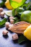 Συστατικά για την αναζωογόνηση του ποτού λεμονιών Στοκ Εικόνα