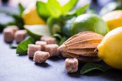 Συστατικά για την αναζωογόνηση του ποτού λεμονιών Στοκ Εικόνες