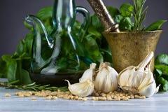 Συστατικά για την παραγωγή του pesto Στοκ Εικόνες