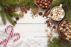 Συστατικά για την πικάντικο καυτό σοκολάτα ή τον καφέ στοκ εικόνες