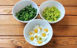 Συστατικά για τη σαλάτα με τα αυγά και τα πράσινα Στοκ Φωτογραφίες