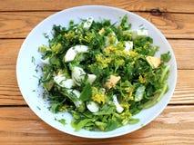 Συστατικά για τη σαλάτα με τα αυγά και τα πράσινα Στοκ φωτογραφία με δικαίωμα ελεύθερης χρήσης