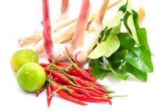 Συστατικά για το μαγείρεμα της καυτής πικάντικης σούπας Ταϊλανδός τσίλι πιάτων του «Tom Yum» Στοκ Φωτογραφία