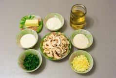 Συστατικά για το μαγείρεμα stroganoff του ζωμού: μανιτάρια, κρεμμύδι, garl Στοκ Εικόνες