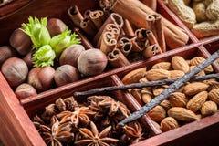 Συστατικά και καρύδια για τη σοκολάτα Στοκ Εικόνες