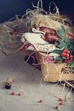 Συστατικά ορεκτικών Antipasto, ποικιλία των λουκάνικων σαλαμιού στο α Στοκ εικόνες με δικαίωμα ελεύθερης χρήσης
