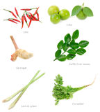 συστατικά Ταϊλανδός τροφί& Στοκ Εικόνα