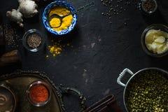 Συστατικά της ινδικής κουζίνας στη σκοτεινή τοπ άποψη υποβάθρου Στοκ φωτογραφία με δικαίωμα ελεύθερης χρήσης