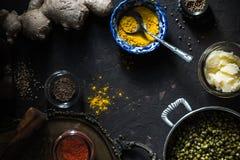 Συστατικά της ινδικής κουζίνας στο σκοτεινό υπόβαθρο οριζόντιο Στοκ Εικόνα