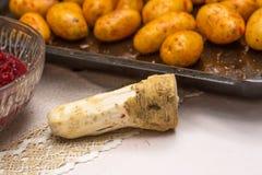 Συστατικά τροφίμων για ένα καλό και υγιές γεύμα Στοκ Εικόνα