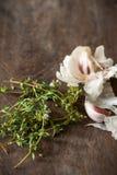 Συστατικά τροφίμων σκόρδου & θυμαριού στον ξύλινο τεμαχίζοντας πίνακα Στοκ εικόνα με δικαίωμα ελεύθερης χρήσης