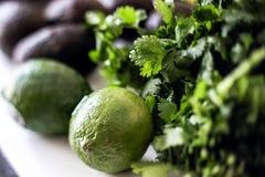 Συστατικά Guacamole στοκ εικόνα