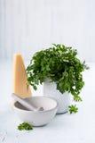 Συστατικά Pesto Στοκ Εικόνα
