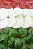 Συστατικό για τη σαλάτα Caprese Τεμαχισμένες ντομάτες, μοτσαρέλα και δέσμη του βασιλικού στοκ εικόνες