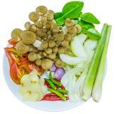 Συστατικό της σούπας χλόης λεμονιών με τα μανιτάρια Στοκ εικόνα με δικαίωμα ελεύθερης χρήσης