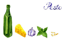 Συστατικό pesto σχεδίων Watercolor Στοκ Φωτογραφίες