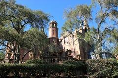 Συχνασμένο μέγαρο Disnayland στοκ φωτογραφία με δικαίωμα ελεύθερης χρήσης