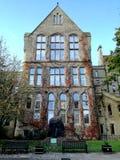 Συχνασμένο σπίτι κισσών στο μαγικό κήπο Στοκ φωτογραφία με δικαίωμα ελεύθερης χρήσης