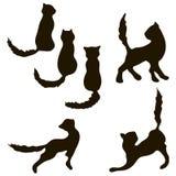 Συλλογή γατών - διανυσματική σκιαγραφία Στοκ Φωτογραφίες