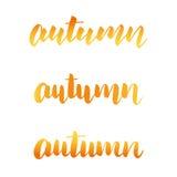 Συλλογή καλλιγραφίας φθινοπώρου Εγγραφή φθινοπώρου Καθιερώνουσα τη μόδα χρωματισμένη χρυσός εγγραφή χεριών για το promo φθινοπώρο Στοκ φωτογραφία με δικαίωμα ελεύθερης χρήσης
