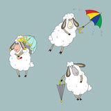Συλλογή με τα διαφορετικά πρόβατα Στοκ Εικόνες