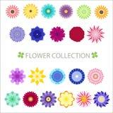 Συλλογή λουλουδιών Απεικόνιση αποθεμάτων