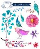 Συλλογή λουλουδιών Watercolor διανυσματική απεικόνιση