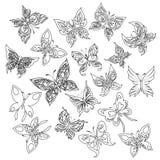 συλλογή πεταλούδων ζωη Απεικόνιση αποθεμάτων