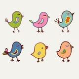 Συλλογή πουλιών των πουλιών χρώματος κινούμενων σχεδίων τέχνης γραμμών Στοκ εικόνες με δικαίωμα ελεύθερης χρήσης