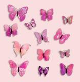 Συλλογή 12 ρόδινο έντομο πεταλούδων φαντασίας Στοκ εικόνα με δικαίωμα ελεύθερης χρήσης