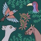 Συλλογή της απεικόνισης ζώων, πουλιών και φυτών Στοκ φωτογραφίες με δικαίωμα ελεύθερης χρήσης