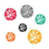 Συλλογή της διανυσματικής απεικόνισης των πορτοκαλιών φετών Στοκ Φωτογραφία