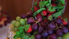 Συλλογή του μούρου βακκινίων φραουλών σταφυλιών μούρων απόθεμα βίντεο