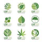 Συλλογή του οργανικού πράσινου διανυσματικού σχεδίου συμβόλων λογότυπων φύλλων ελεύθερη απεικόνιση δικαιώματος