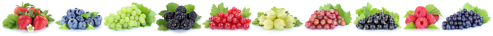 Συλλογή του frui μούρων βακκινίων φραουλών σταφυλιών μούρων Στοκ Φωτογραφία