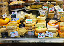 Συλλογή τυριών Στοκ Εικόνες