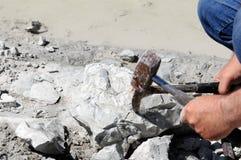 Συλλογή των απολιθωμάτων πάρτε το απολίθωμα κοραλλιών από έναν βράχο κιμωλίας Στοκ Φωτογραφίες
