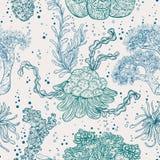 Συλλογή των θαλασσίων φυτών, των φύλλων και του φυκιού διανυσματική απεικόνιση