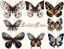 Συλλογή των διανυσματικών ρεαλιστικών ζωηρόχρωμων πεταλούδων Στοκ Εικόνες