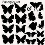 Συλλογή των διανυσματικών σκιαγραφιών πεταλούδων Στοκ Εικόνα